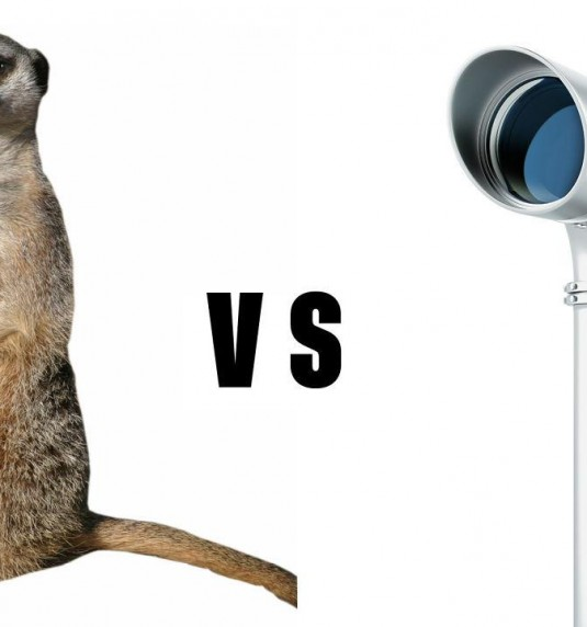 #RT #Meerkat Vs. #Periscope Live Stream Broadcasting