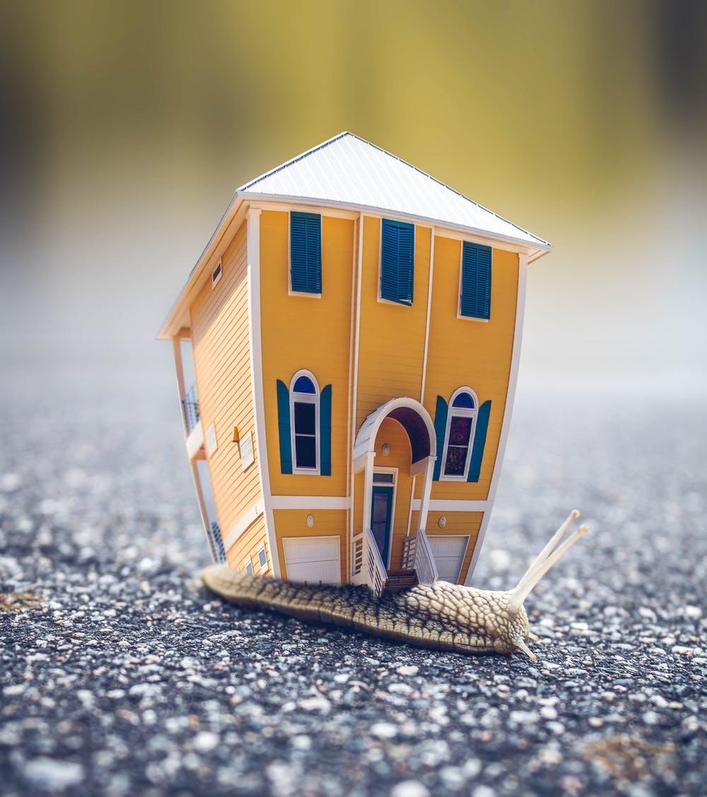 Minnesota Housing Good & Bad Habits